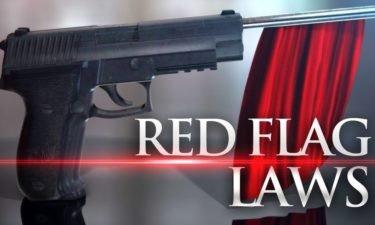 red flag gun laws