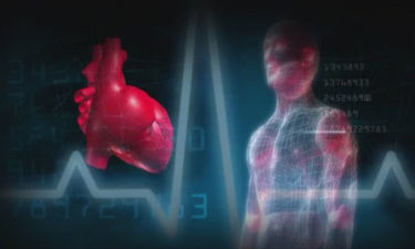 Heart health, cardiovascular fitness