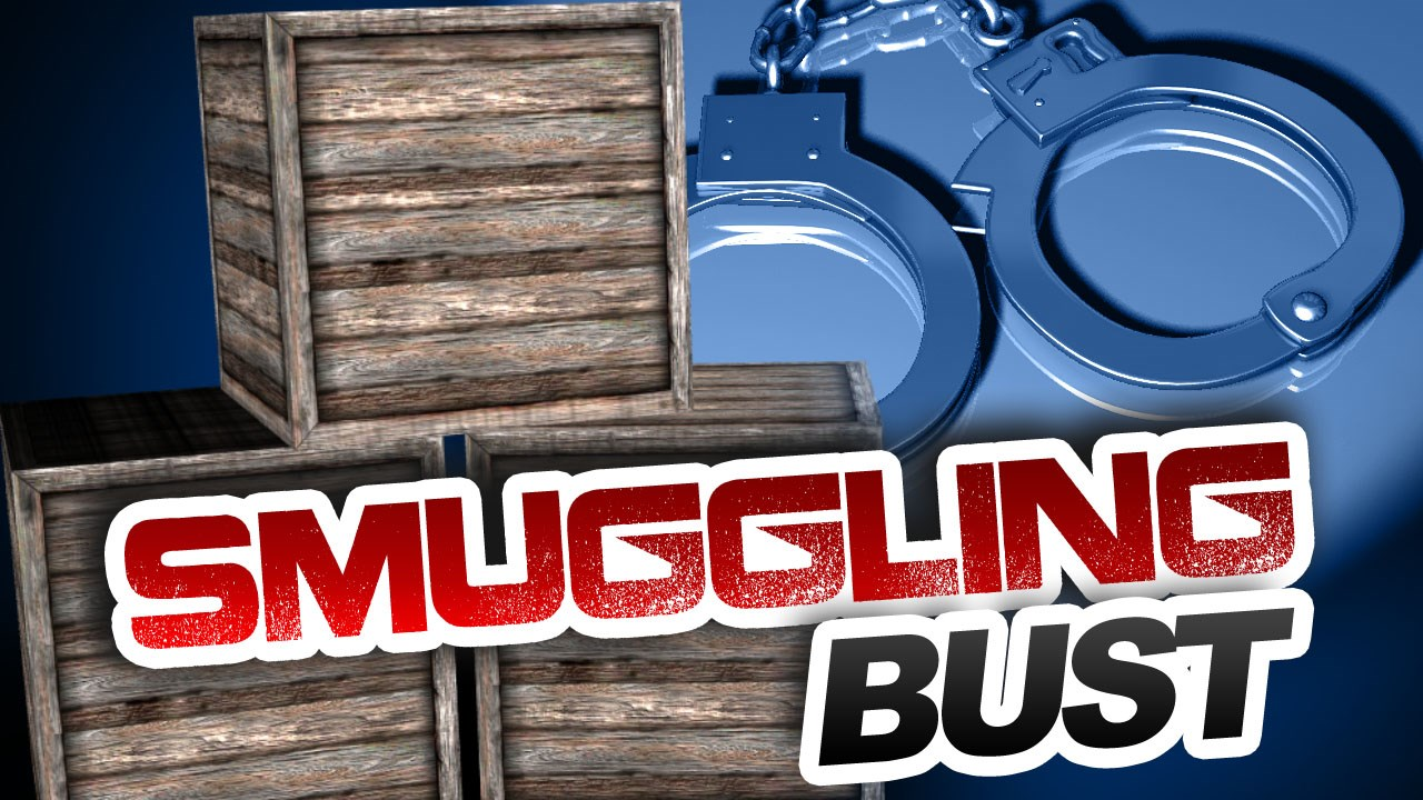 smuggling bust