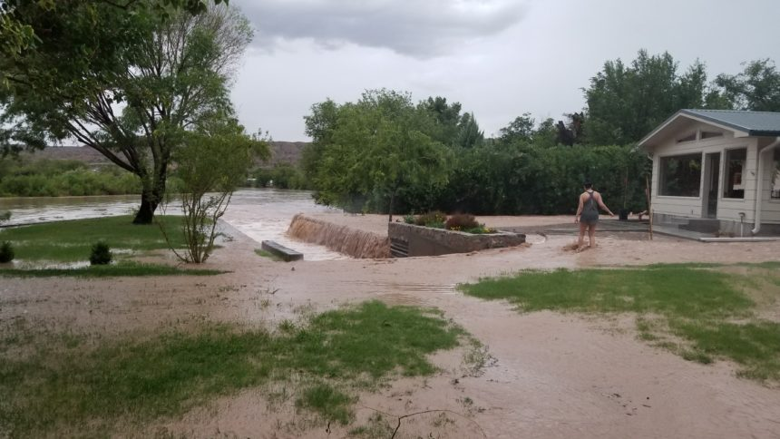 T-or-C-flooding