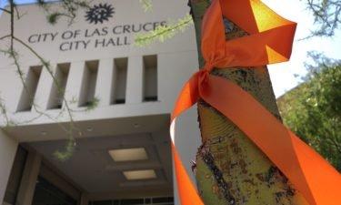 orange-ribbons