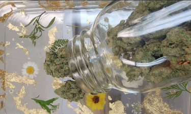 072321 lc cannabis