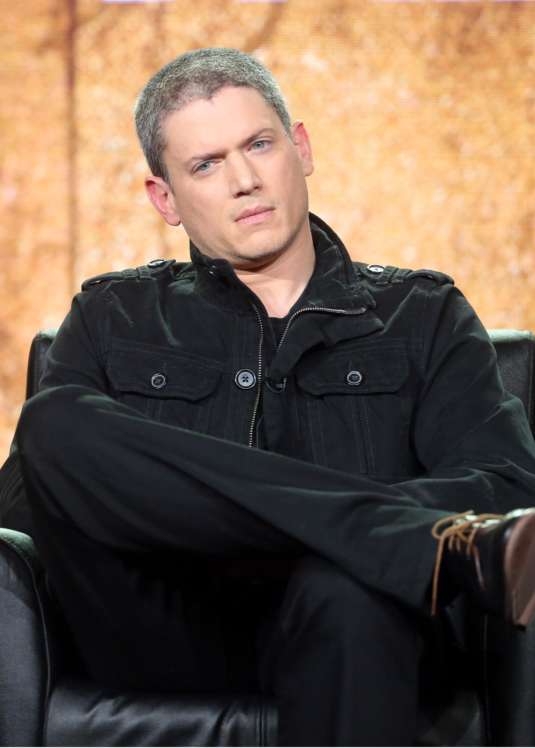 <i>Frederick M. Brown/Getty Images</i><br/>Wentworth Miller has revealed he received an autism diagnosis a year ago