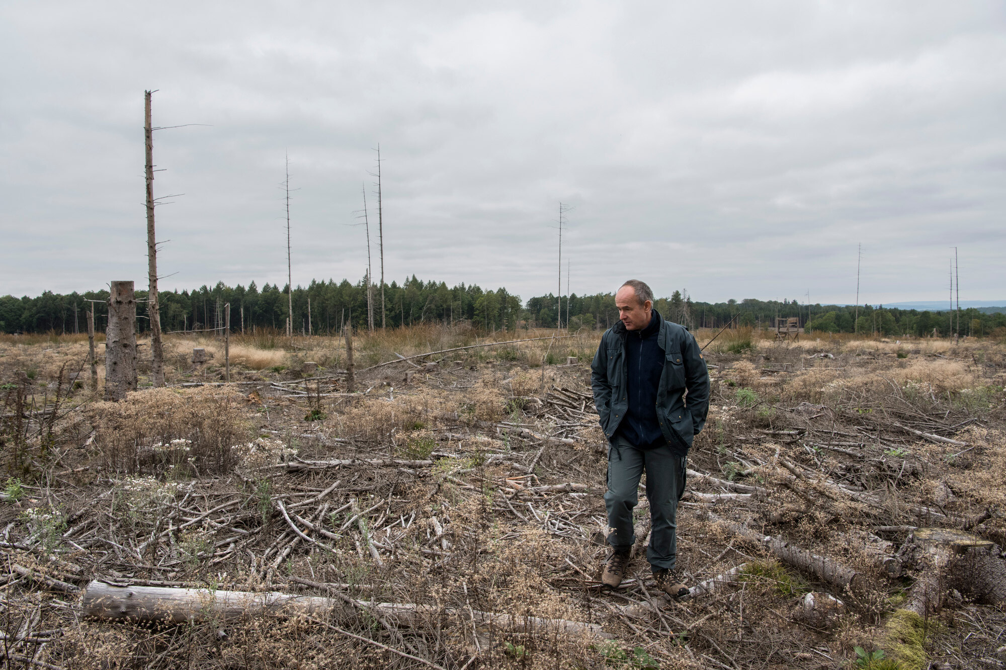 <i>Helena Schätzle/Laif/Redux for CNN</i><br/>Peter Meyer shows an area where trees were completely destroyed by the bark beetle.