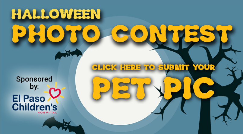 Click here to submit your Pet pic