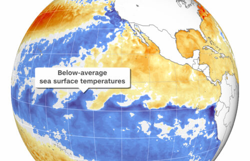 La Niña conditions -- the opposite phase of El Niño -- have emerged in the tropical Pacific Ocean over the past month.